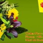 Buy Cake & Flower Delivery on time in Chennai -  Floristchennai.com