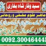 Love marriage problem solution America USA all