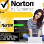 How to recover missing Norton Toolbar in Internet Explorer