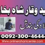 Love marriage problem solution astrologer USA America all