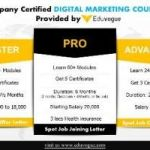 Best Digital marketing Institute in Mumbai And Pune