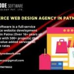 Leading Ecommerce Web Design Agency In Patna - Dynode Software