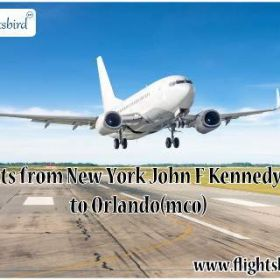 Search and Book JFK to MCO Fligths with flightsbird