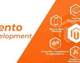 Pick out top Magento Development Company