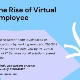Pick out the Top Virtual Employee Service Provider